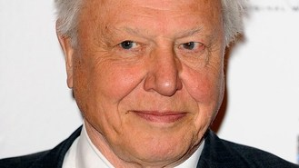 Attenborough and Bjork in TV tie-up