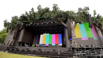 Trees for Rolling Stones stage