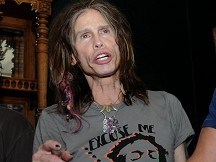 Steven Tyler hurt in hotel fall