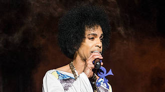 Prince's siblings named estate heirs