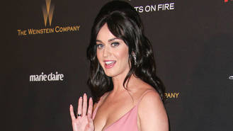 Katy Perry 'laid on charm for Orlando Bloom'